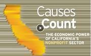 Causes Count 2019