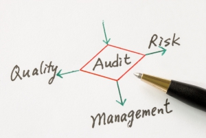Nonprofit Audit Guide